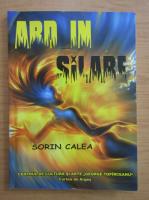 Anticariat: Sorin Calea - Ard in silabe