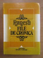 Anticariat: Ion Pusca - Panciu. File de cronica