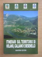 Anticariat: Itinerari sul territorio di Volano, Calliano e Besenello