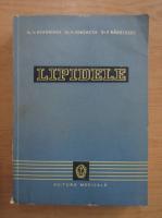 Anticariat: V. Beroniade - Lipidele