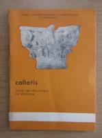 Anticariat: Callatis. Guide archeologique de Mangalia