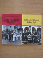 Anticariat: Doru Dumitrescu - Din culisele istorie (2 volume)