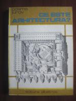 Cosma Jurov - Ce este arhitectura?