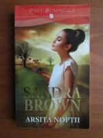 Anticariat: Sandra Brown - Arsita noptii