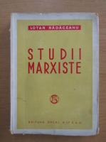 Lotar Radaceanu - Studii marxiste