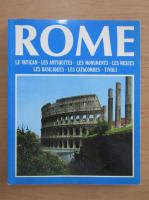 Anticariat: Rome. Le Vatican, les antiquites, les monuments