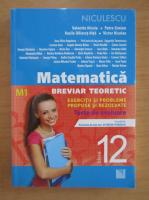 Anticariat: Valentin Nicula - Matematica, clasa a XII-a