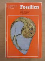 Anticariat: Gustav Hermann Krumbiegel - Fossilien