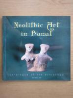 Anticariat: Neolithic Art in Banat