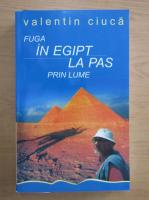 Valentin Ciuca - Fuga in Egipt, la pas prin lume