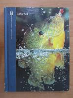 Anticariat: Dick Sternberg - Panfish