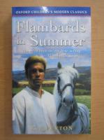 K. M. Peyton - Flambards in summer