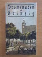 Anticariat: Promenaden ben Leipzig (editie facsimil)