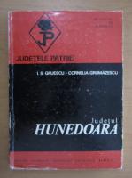 I. S. Gruescu - Judetul Hunedoara