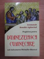 Benedict Aghioritul - Pregatirea pentru Dumnezeiasca Cuminecare