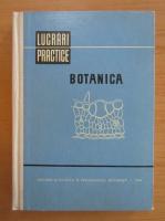 Anticariat: Irina Morlova - Lucrari practice. Botanica
