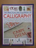 Janet Mehigan - The Practical Encyclopedia of Calligraphy