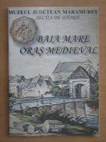 Baia Mare, oras medieval