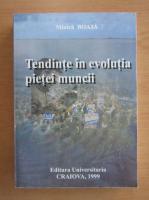 Anticariat: Minica Boaja - Tendinte in evolutia pietei muncii