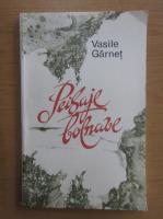 Vasile Garnet - Peisaje bolnave
