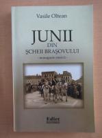 Anticariat: Vasile Oltean - Junii din Scheii Brasovului