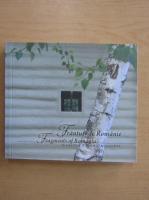 Anticariat: Claudia Tache Dragachis - Franturi de Romanie (editie bilingva)