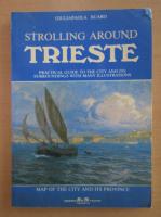 Anticariat: Giuliapaola Ruaro - Strolling Around Trieste