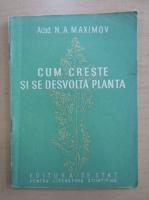 Anticariat: N. A. Maximov - Cum creste si se dezvolta planta
