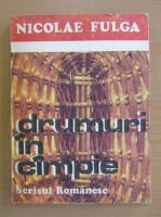 Nicolae Fulga - Drumuri in campie