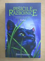 Anticariat: Erin Hunter - Pisicile razboinice. Exilul (volumul 15)