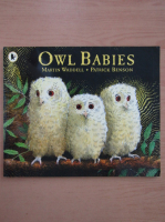 Anticariat: Martin Waddell - Owl Babies
