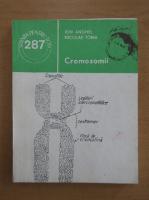 Anticariat: Ion Anghel - Cromozomii