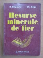 R. Filipovici - Resurse minerale de fier