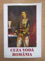 Anticariat: Stelian Neagoe - Cuza Voda. Romania