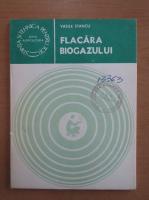 Vasile Stancu - Flacara biogazului