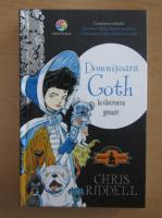 Anticariat: Chris Riddell - Domnisoara Goth la rascrucea groazei