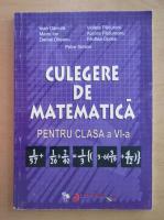 Ioan Dancila - Culegere de matematica pentru clasa a VI-a