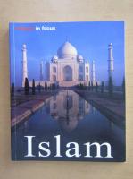 Anticariat: Markus Hattstein - Islam