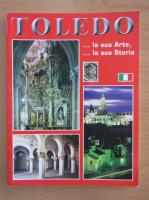 Anticariat: Toledo. La sua arte, la sua storia