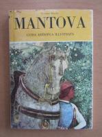 Anticariat: Ercolano Marani - Mantova