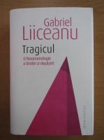 Anticariat: Gabriel Liiceanu - Tragicul