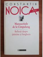 Constantin Noica - Manuscrisele de la Cimpulung. Reflectii despre taranime si burghezie