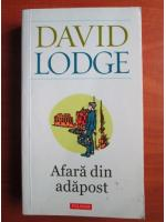 David Lodge - Afara din adapost