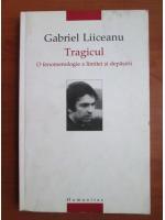 Anticariat: Gabriel Liiceanu - Tragicul. O fenomenologie a limitei si depasirii