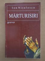 Ion Nitulescu - Marturisiri