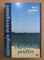 Anticariat: Pavel Chihaia - Infaptuiri pontice