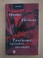 Theodor Vasilache - Fantasme, oglindiri, inscenari