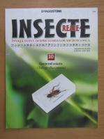 Insecte reale, volumul 10. Greierul asiatic