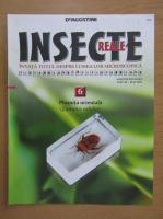 Insecte reale, volumul 6. Plosnita orientala
