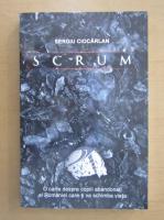 Sergiu Ciocarlan - Scrum